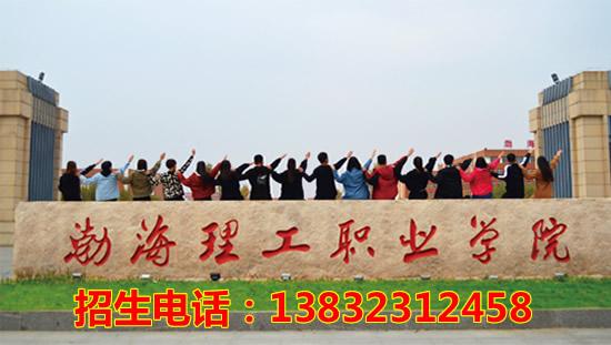 渤海理工职业学院2019年单招招生简章